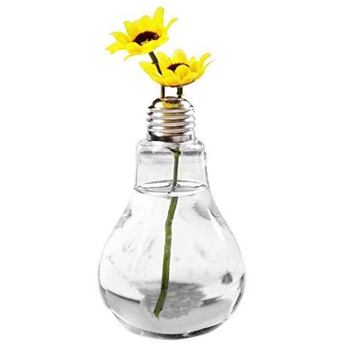 Ruikey ampoule Forme Table Boule en verre Plante Vase en Verre Transparent Vase Air Plant Terrarium Succulent Planter Conteneur