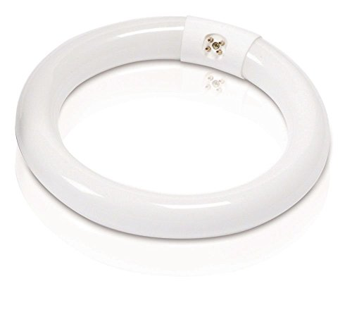 Philips 392225 Circline Fluorescent 22-Watt 8-Inch T9 Soft White, 1 Pack