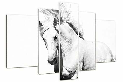 Tulup Cuadro de Cristal Pintura sobre Vidrio 170x100cm Imagen Gráfica Impresión de 5 Piezas Decoracion de Pared Moderno Vidrio Cristal - caballo blanco