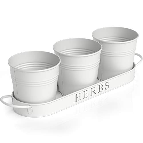 Barnyard Designs Herb Pot Planter Set with Tray