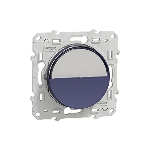 Schneider Electric S550266 Cobalt - Interruptor de presión con portaetiquetas
