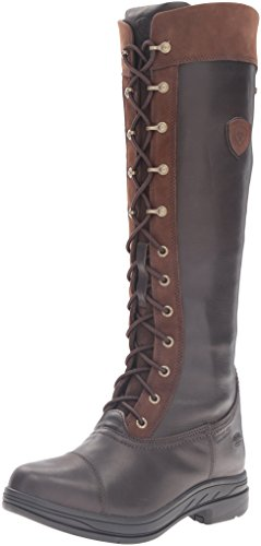 ARIAT Damen Coniston Pro GTX Insulated modischer Stiefel, Ebenholz, 39 EU