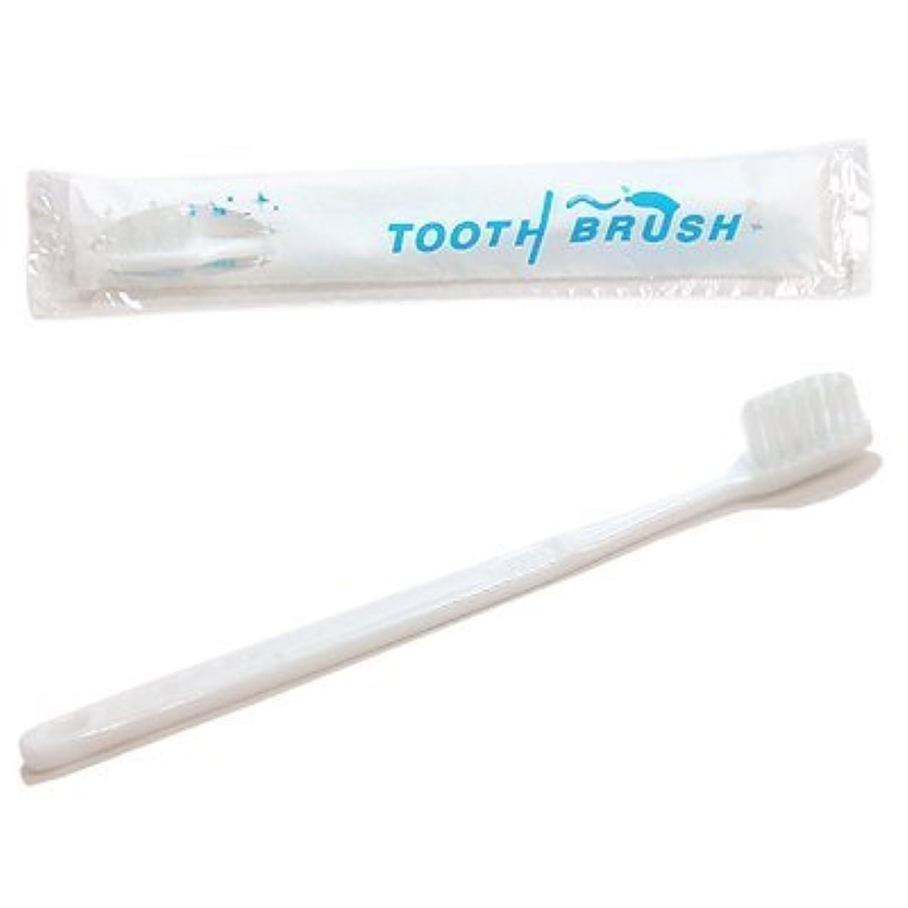 バンガロー渇きシニス使い捨て 粉付き歯ブラシ ケース売り (200本入り)