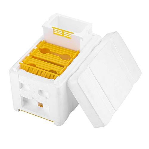 Baoniansoo Bienenzucht Königin Zucht, Schaumbienenstock, Bienenzuchtwerkzeuge mit hoher Dichte, Kunststoffschaummaterial, für die Bienenpaarungskopulation