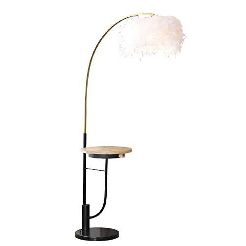 Lámparas LED Lujo nórdico pluma creativa del piso de la lámpara de la muchacha del estilo posmoderno dormitorio Mesa de café Pesca placa de hierro Lámpara de pie Negro Luz caliente del piso blanco