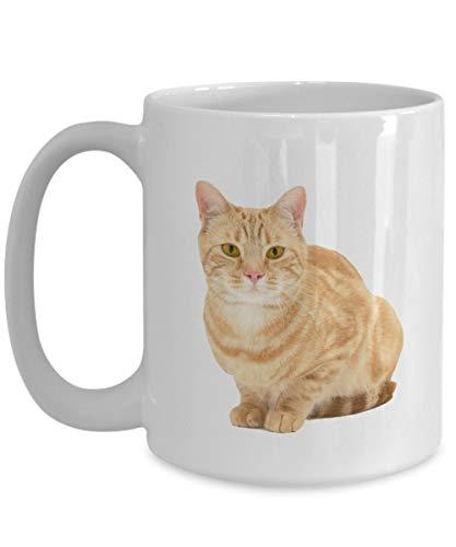 Taza de café de 11 oz, color naranja, para gato atigrado, gato atigrado, color naranja