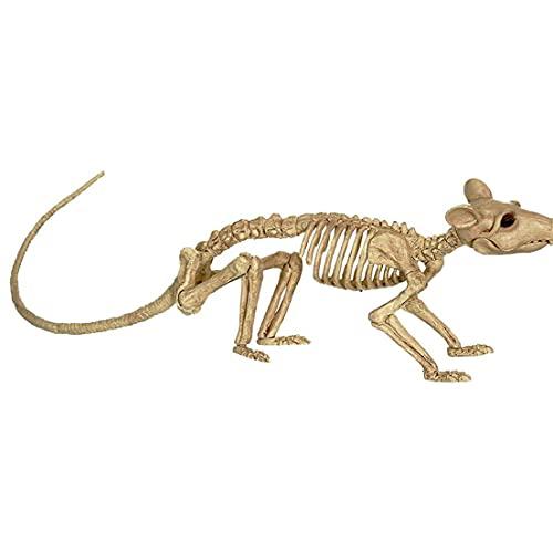 apofly Decoración De Esqueletos De Halloween Bonez Skeleton, Esqueleto De Rata De Halloween, Rata De Esqueleto Crazy, Esqueleto De Rata De Halloween, Decoración Esqueleto Plástico
