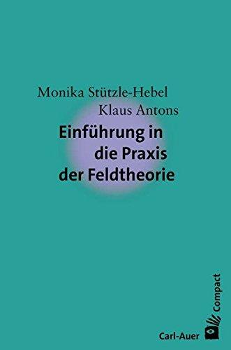 Einführung in die Praxis der Feldtheorie (Carl-Auer Compact)