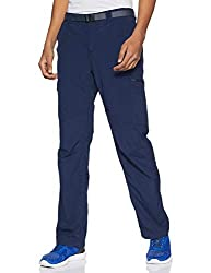 Columbia Men's Men's Silver Ridge Cargo Pant , Collegiate Navy, 30x30