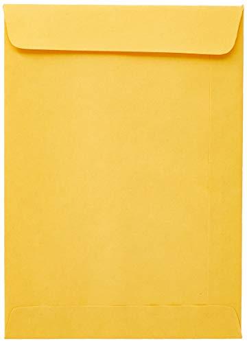 Scrity SKO018, Envelope Saco, Multicolor, Pacote de 250