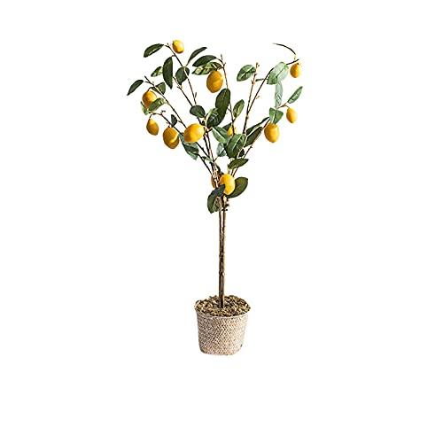 Bonsai Decorative La planta pequeña de la planta artificial decora el árbol de limón de flores artificiales, de 37 pulgadas de altura, es una buena opción tanto en interiores como en exteriores. Bonsa