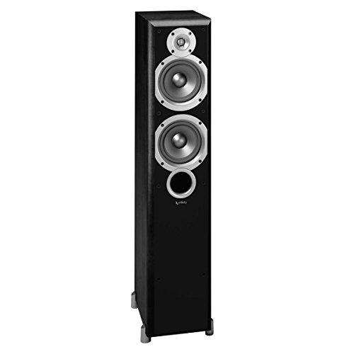 Fantastic Prices! Infinity Primus P253 2-Way Dual Floorstanding Speaker (Black)
