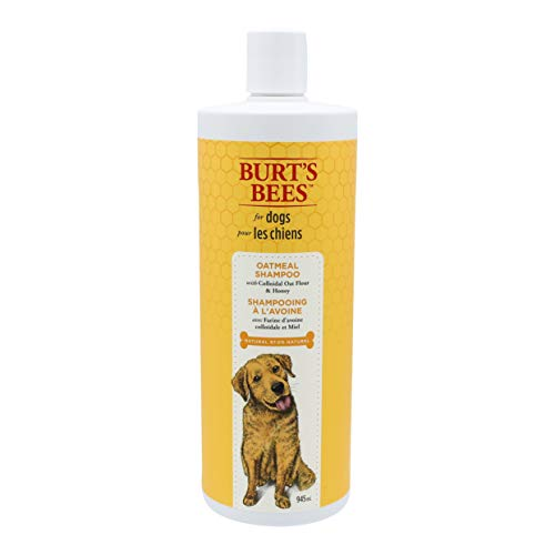 Burt's Bees for Dogs Natural Oatmeal Shampoo for Pugs