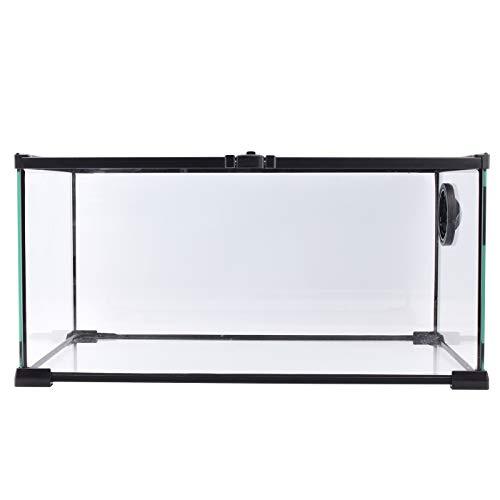 Aiicioo Reptile Glass Tank - Full View Natural Terrarium for Chameleon Gecko Corn Snake Iguana & Lizard Aquarium 20 x 12 x 10 Inches