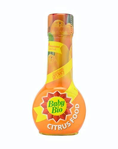 Baby Bio Engrais concentré pour plantes d'intérieur 175 ml Agrumes Orange