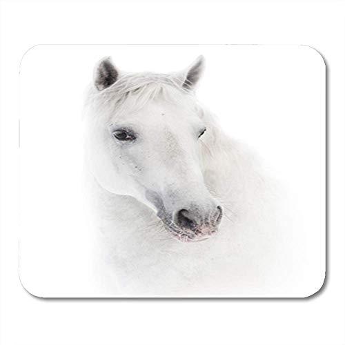 Semtomn Gaming Mouse Pad Tier Schneeweißes andalusisches Pferd über schönem Pferdesport Equine Farm Farm Dekor Büro Computerzubehör Rutschfeste Gummiunterlage Mousepad Mouse Mat