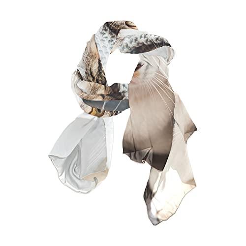 WJJSXKA Bufandas de gasa, chales y chales para vestidos de noche, chal de boda grande y suave, edredones cubiertos de gato