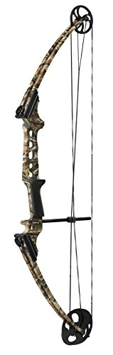 Genesis Gen-X Compound Bow