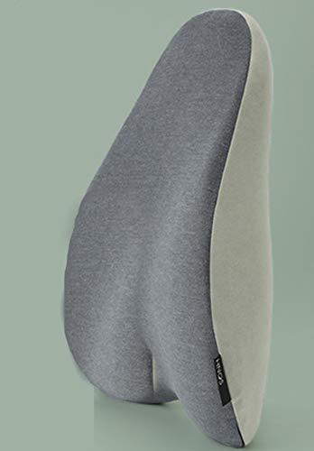 FLL Büro Lendenkissen, Auto Rollstuhl Tisch und Stuhl Lordosenstütze Kissen, ergonomischer orthopädischer Kern, Schmerzlinderung orthopädische Kissen
