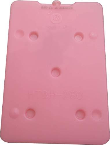 アイスバッテリー/IceBattery?mini クールバッグ用保冷剤(設定温度 5〜10℃の水分・栄養補給でパフォーマンス最大化を応援!)