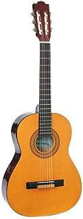 sunlite guitars