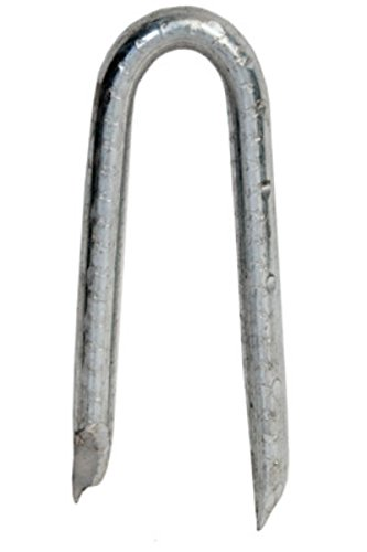 """HILLMAN FASTENERS 461534 5 lb 3/4"""" Hot Dipped Galvanized Poultry Staple"""