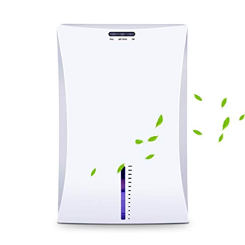 Product Image of the Latitop Small Dehumidifier