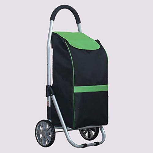 RTTgv Einkaufstrolleys Einkaufswagen Leichtgewichtler 2 Wheels Large Capacity Shopping Trolley hilft Mobilität mit Haltestangen und Reißverschlusstaschen (Stil : E)