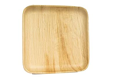 "Eco Only 8"" Disposable Palm Leaf Plates Square 