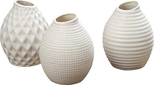 CasaJame 3 x Portafiori da Interno ed Esterno - Vasi Ceramica da Tavola per Piante - Fioriere in Porcellana Decorativa con Struttura a Rilievo - Terra