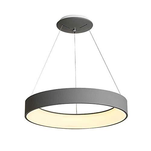 ZHAOJDD Light up Life/Boutique Lighting plafondlamp ronde ring moderne grijze hanglamp met afstandsbediening hanglamp metaal acryl eenvoudige hanglamp eettafel Living 60 cm.