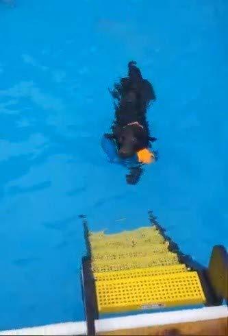 Waterdog Adventure Gears Pool Stairs
