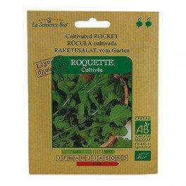 Graines bio Roquette cultivée - La Semence Bio