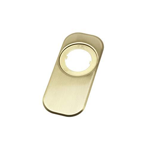AMIG - 6356 Embellecedor para escudo Modelo 10 | Latón | Acabado mate | 165x74mm