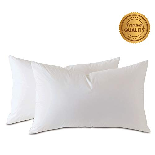 Learn More About Plankroad Home Décor 21×72 Hypoallergenic Luxury 100% Small Feather Rectangular Grand King Pillow Insert, 100% Cambric Cotton Shell, Never Vacuum-Packed, Odorless, Made in USA, Set of 2