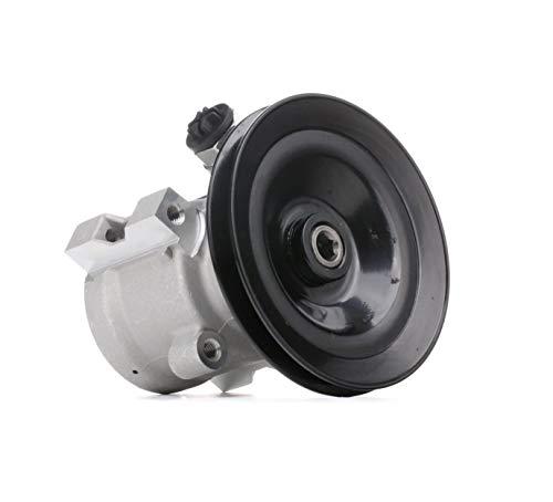 STARK SKHP-0540073 Hydraulikpumpe, Lenkung Hydraulikpumpe Lenkung, Elektrische Servopumpe, Lenkungspumpe
