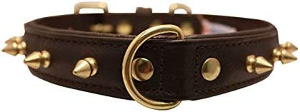"Angel Pet Supplies 41261 Spiked Studded Leather Dog Collar, 20""x1"", Chocolate Brown"