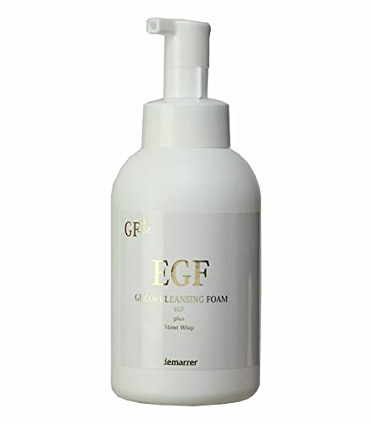 重荷残酷な予測デマレ GF炭酸洗顔フォーム 500ml