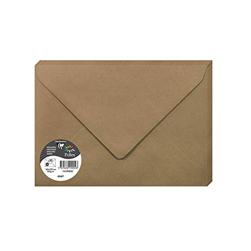 Clairefontaine 29002C Paquete de 20 sobres de polen 16.2 x 22.9 cm, 120 g, Brown Kraft