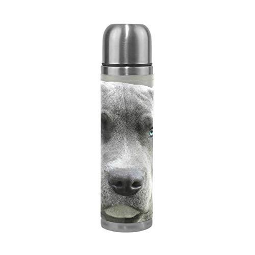 FANTAZIO Thermoskanne schwarz und weiß Kurzmantel Hund Thermosflasche für heiße Flüssigkeiten