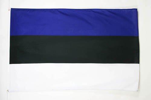 AZ FLAG Flagge ESTLAND 90x60cm - ESTNISCHE Fahne 60 x 90 cm - flaggen Top Qualität