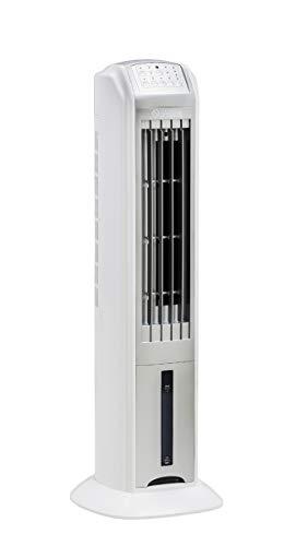 Climatizador Peler 4-127v Olimpia Splendid Branco 110v