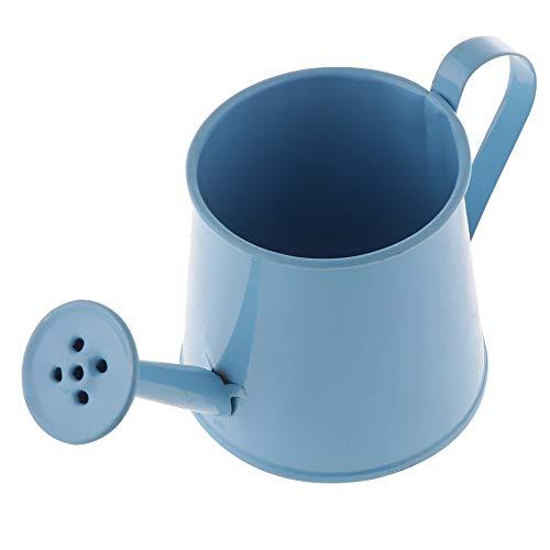 N/A mini gieter van metaal, vaas in ijzeren pan, binnendecoratie Een