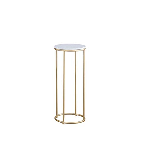 CHOUCHOU Shelves Metal Flower Stand Living Room Marble Plant Stand Balcony Office Display Stand Garden Courtyard Auditorium Decoration (Size : Small),Size:Small Flower Pot Rack (Size : Large)