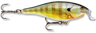 Rapala Shallow Shad Rap 05 Fishing Lures