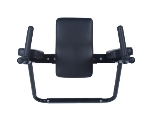 Wall Mount Dip Station with Vertical Knee Raise