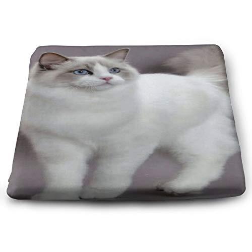Nicokee Sitzkissen aus Persischer Katze, rutschfest, Memory-Schaum, für Esszimmer, Küche, Büro, Auto, 38,1 x 34,9 cm, Weiß