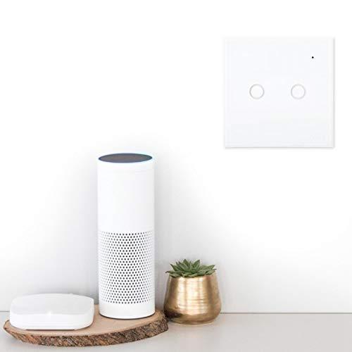 FOLOSAFENAR Interruptor de luz Inteligente Diseño de Moda de Buena Durabilidad para Google Home Enchufe de la UE(2 Way)