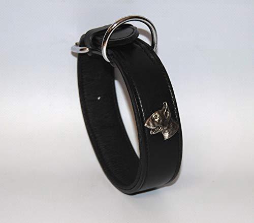 BULLYZEI Schönes Lederhalsband Bullterrier D-Ring bei der Schnalle 50cm x 4cm SCHWARZ