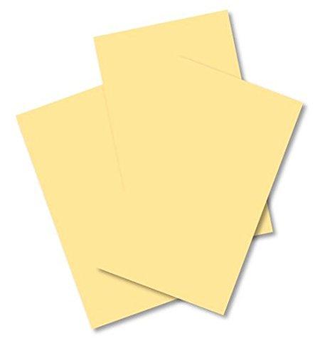 House of card & Paper 160gsm A4–pelle di capra di carta pergamena (confezione da 50fogli)